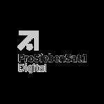 ProSiebenSat1-psmedia-social-media-performance-agentur-hamburg